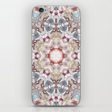 winter blossom N°2 iPhone & iPod Skin