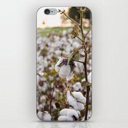 Cotton Field 3 iPhone Skin