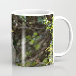 Gray heron on the edge of a pond Coffee Mug