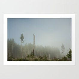 Hawk Forest Art Print