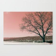 Sunset Park photo landscape Canvas Print
