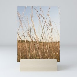 Fields Mini Art Print