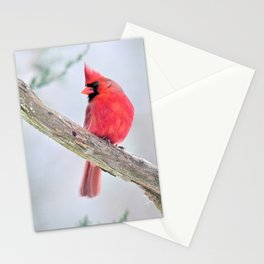 "Cardinal: ""Do You Hear What I Hear?"" Stationery Cards"