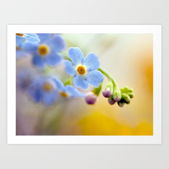 FORGETMENOT Art Print