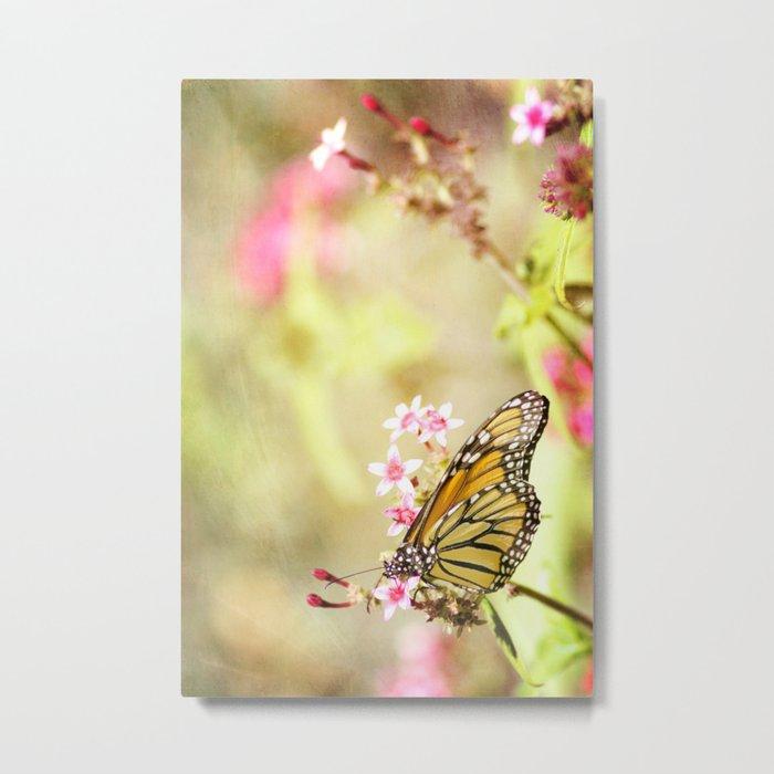 Untitled Monarch Metal Print
