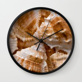 Seashells collection background Wall Clock