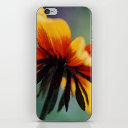 Bee's Eye view of a Black-eyed Susan iPhone Skin