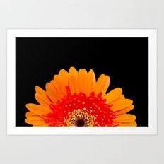 ORANGE GREETING Art Print