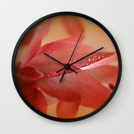 Cactus Blossom in Sunlight  Wall Clock