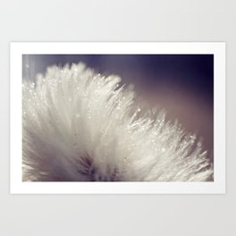 Fluffy white Art Print