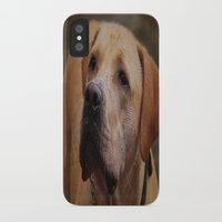 labrador iPhone & iPod Cases featuring Golden Labrador by Doug McRae