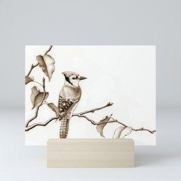 Blue Jay Mini Art Print
