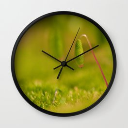Moss germ, Alone in a green Land Wall Clock