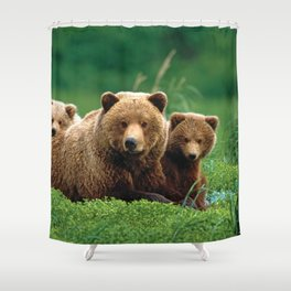 Spectecular Grizzly Bear Mother With Adorable Two Cubs In Meadow Ultra HD Shower Curtain