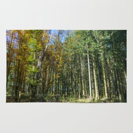 Colorful French forest Rug