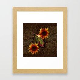 Sunflowers Vintage # Framed Art Print