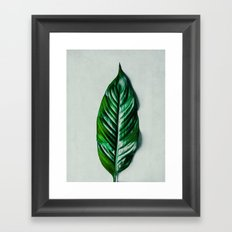 Green Leaf 1 Framed Art Print