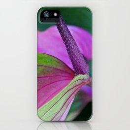 Inner Sanctum iPhone Case