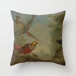 Aert Schouman - Pheasants Throw Pillow