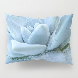 Succulents of the Channel Islands // Scorpion Pillow Sham