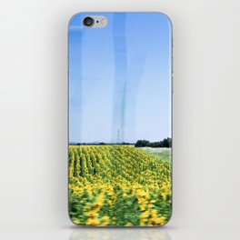 Sunflower Fields iPhone Skin