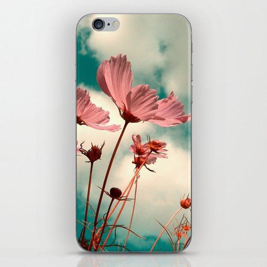 cosmos flowers II iPhone Skin