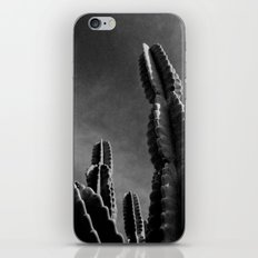 Cactus IV iPhone & iPod Skin