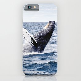 Humpback Whale Ocean iPhone Case
