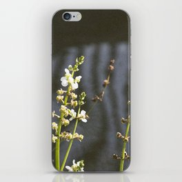Water Dance iPhone Skin