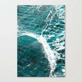Whoosh Canvas Print