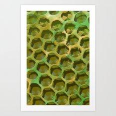 Green Honey Art Print