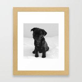 Pug Mitxiru Framed Art Print