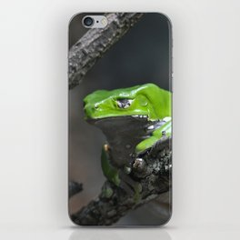 Monkey Frog iPhone Skin