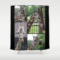 giraffes Shower Curtains featuring Giraffes  by grapeloverarts