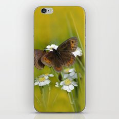 Summery Butterflies on Gold iPhone & iPod Skin