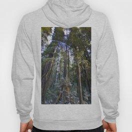 Redwoods Hoody