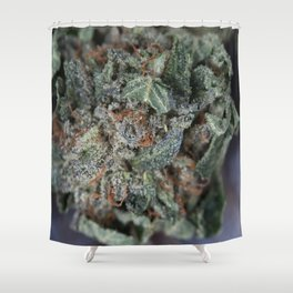 Master Kush Medical Marijuana Shower Curtain