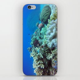 Great Barrier Reef iPhone Skin