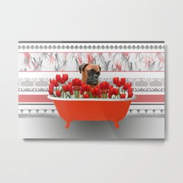 Boxer dog in red Bathtub with Tulips #society6 Metal Print