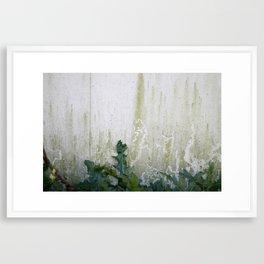 Greenery.  Framed Art Print