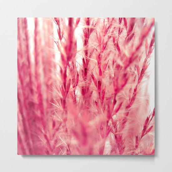 red grasses II Metal Print