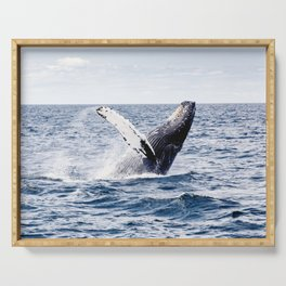 Humpback Whale Ocean Serving Tray