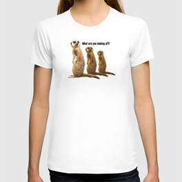 What Are You Looking At?! (Meerkats) T-shirt