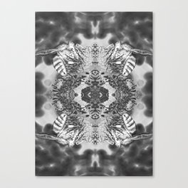 bees black and white Canvas Print