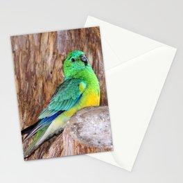 Graceful Parakeet Stationery Cards
