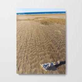 Eden Found-  Woodgate Beach, Australia Metal Print