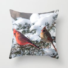 Sunny Winter Cardinals in the Adirondacks Throw Pillow
