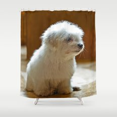 Coton de Tulear Puppy Shower Curtain