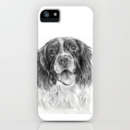 Springer Spaniel iPhone Case