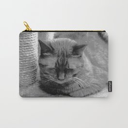 Sleeping Cat Carry-All Pouch